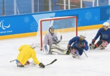 2018 U.S. Paralympic Sled Hockey Team