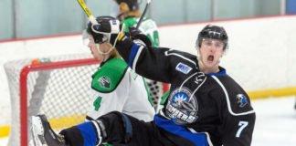 2019 spring adult hockey tournaments