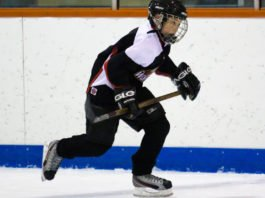 youth hockey performance