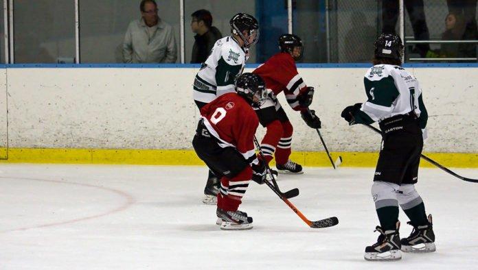 hockey parent behavior