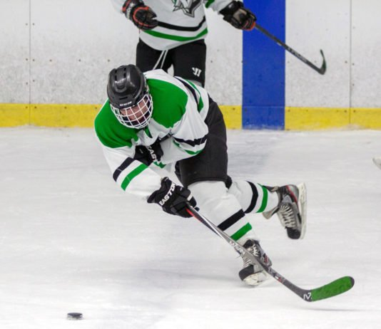 senior league hockey